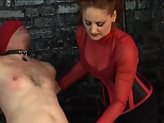 Sexy dominatrix grips a guys penis